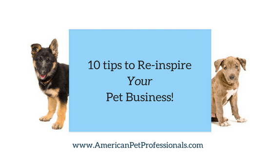 10 tips to re-inspire your pet business