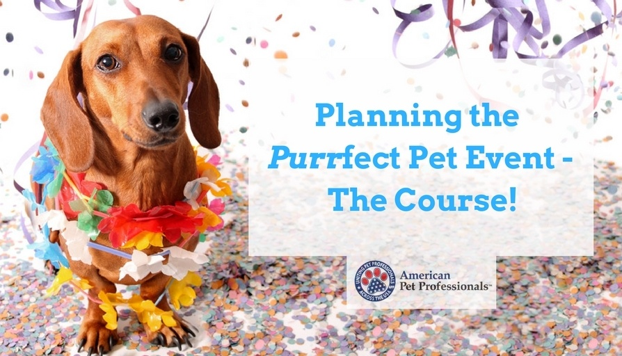 Copy of Planning the Purrfect Pet Event - The Course